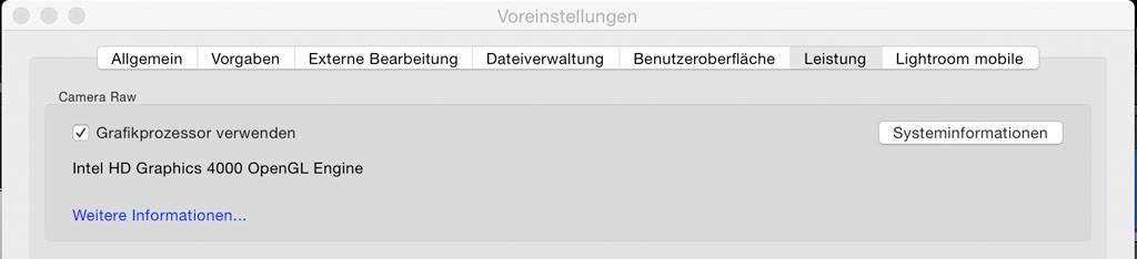 screenshot-grafikprozessor-LR